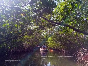 GL_adventure Wolverton Trail-Placida Florida